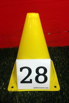 Image showing a 3 inch tall number on a 7 in tall cone.